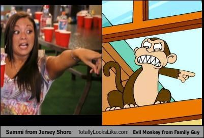 Evil Monkey,family guy,jersey shore,sammi