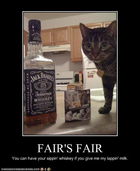 FAIR'S FAIR You can have your sippin' whiskey if you give me my lappin' milk.