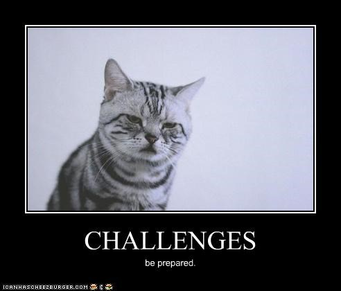 CHALLENGES be prepared.
