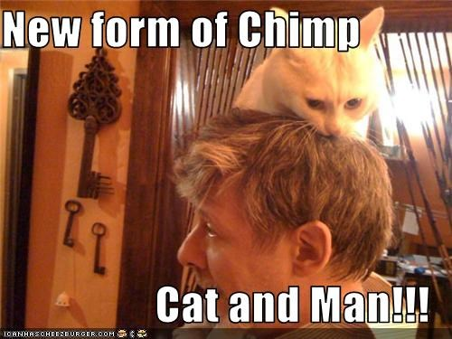 New form of Chimp  Cat and Man!!!