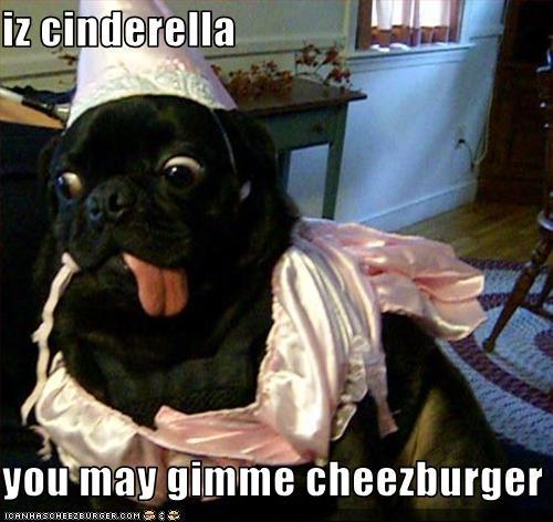 Cheezburger Image 3635374848
