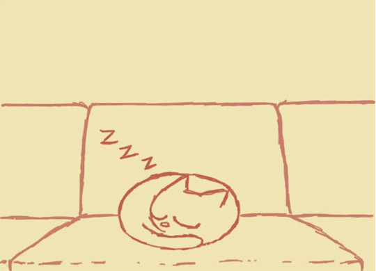 comics of what any cat owner does when he sees his cat sleeping