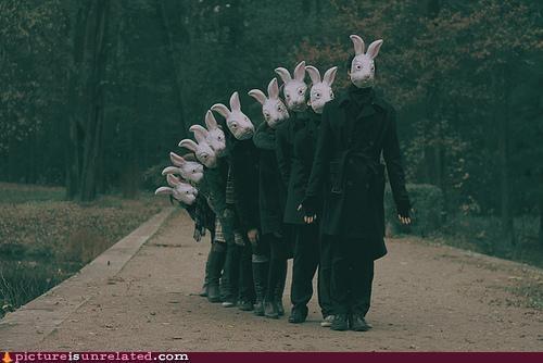 animal-non-human bunnies costume creepy wtf - 3635518464