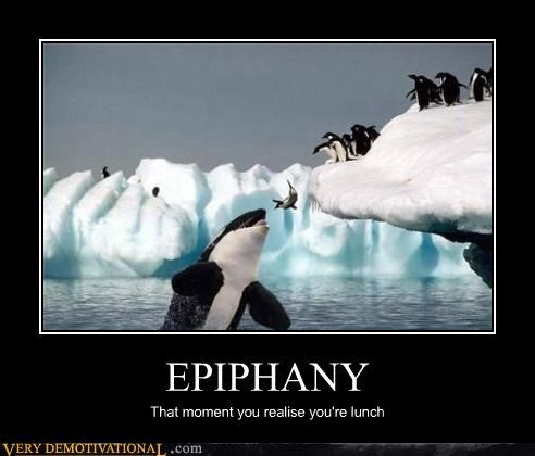 EPIPHANY That moment you realise you're lunch