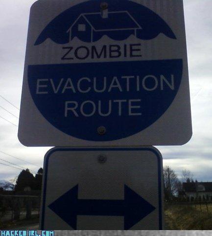 zombie - 3637734144