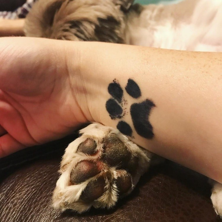 paws dogs tattoos trending - 3638021