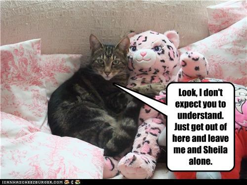 caption,captioned,cat,dont,expect,get out,leave,look,love,request,stuffed animal,understand