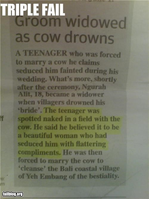 bestiality,cow,drown,failboat,marriage,Probably bad News