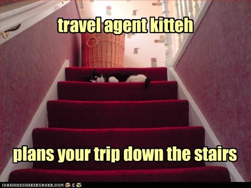 accident,caption,captioned,cat,double meaning,down,planning,plans,stairs,Travel,travel agent,trip