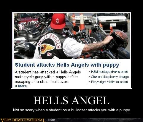 awesome,bulldozer,hells angel,motorcycles,news,puppy,Pure Awesome,wtf