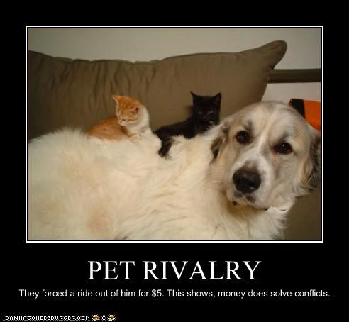 PET RIVALRY They forced a ride out of him for $5. This shows, money does solve conflicts.