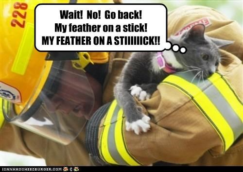 caption captioned cat favorite fire fireman go back Hall of Fame no Protest protesting toy upset wait - 3644689408