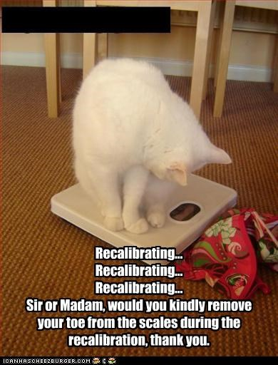 Recalibrating... Recalibrating... Recalibrating... Sir or Madam, would you kindly remove your toe from the scales during the recalibration, thank you.