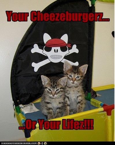 Cheezburger Image 3653776128