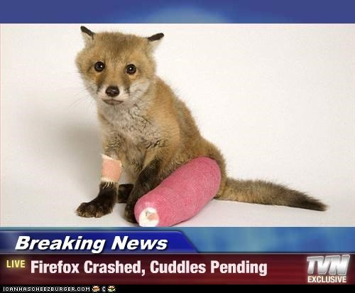 Breaking News - Firefox Crashed, Cuddles Pending
