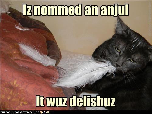 Iz nommed an anjul It wuz delishuz KamikazeKatze 06-19-10