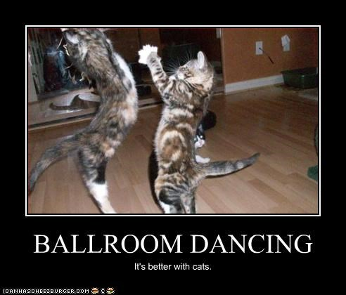 BALLROOM DANCING It's better with cats.