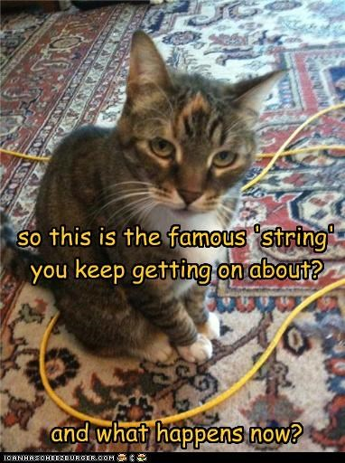 confused string - 3655154176