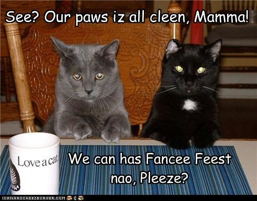 caption Cats clean paws dinner fancy feast - 3655235072
