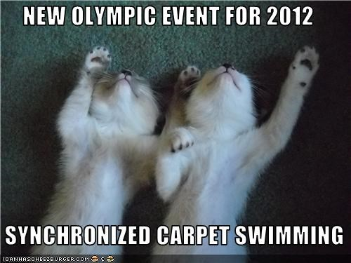 caption captioned carpet cat Cats event introduction kitten laying down new olympic swimming