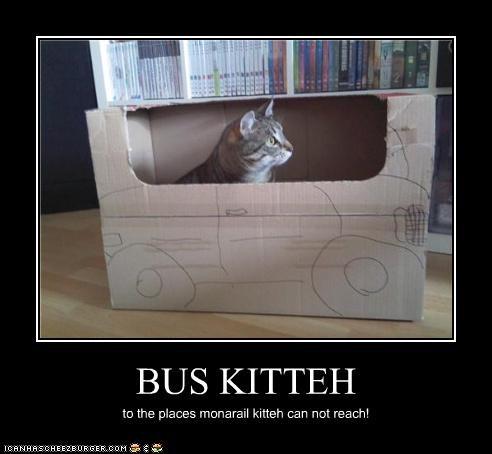 box,bus