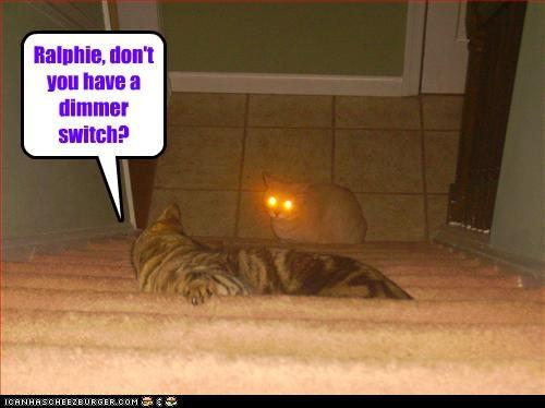annoying bright lazers - 3659579904