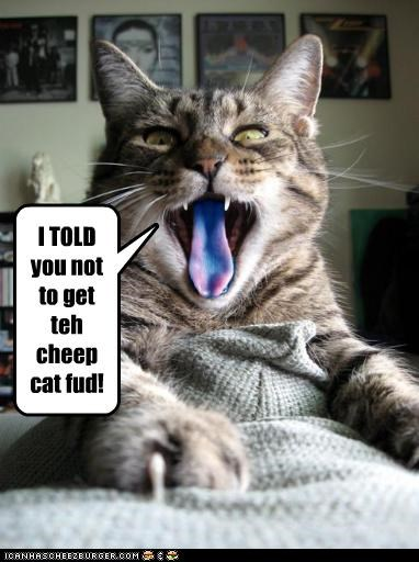 I TOLD you not to get teh cheep cat fud!