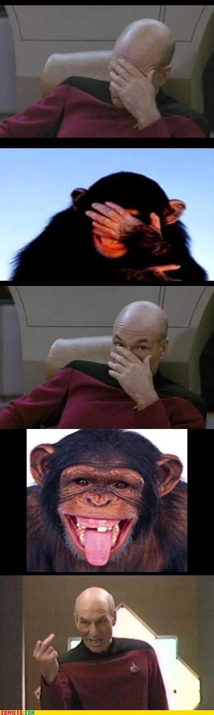 anger animals Captain Picard flipping the bird jean-luc picard monkey Star Trek - 3660102144