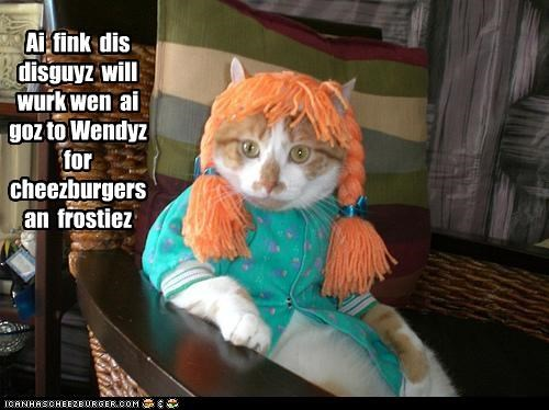 Cheezburger Image 3661256448