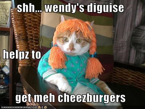 Cheezburger Image 3661304576