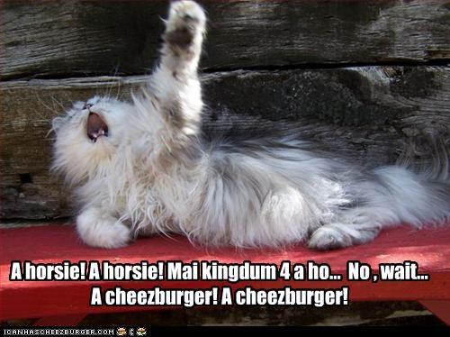 Cheezburger Image 3662614016