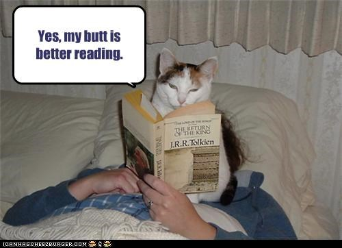 annoying bad cat butt reading - 3662668800