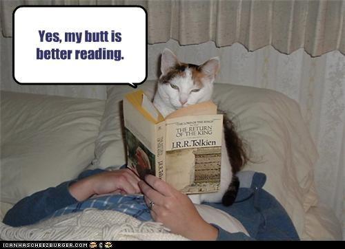 annoying bad cat butt reading - 3662668800