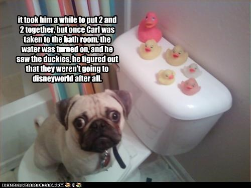 it took him a while to put 2 and 2 together, but once Carl was taken to the bath room, the water was turned on, and he saw the duckies, he figured out that they weren't going to disneyworld after all.