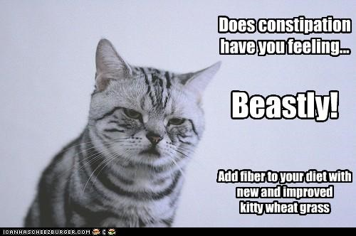 Does constipation have you feeling... Beastly! Add fiber to your diet with new and improved kitty wheat grass