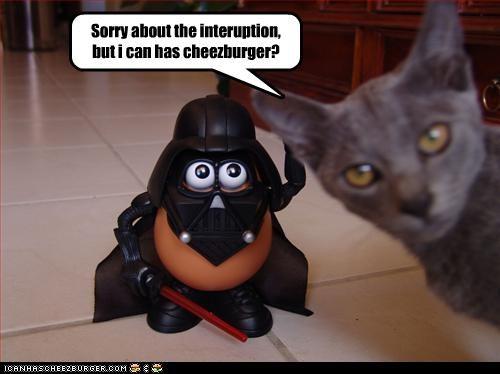 Cheezburger Image 3665392384