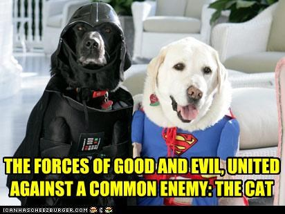darth vader,enemy cat,evil,good,labradors,superman,unity