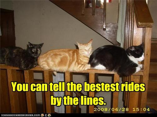line ride - 3668045056