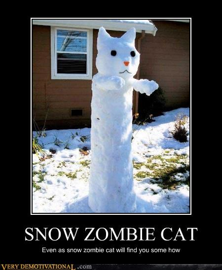 SNOW ZOMBIE CAT Even as snow zombie cat will find you some how