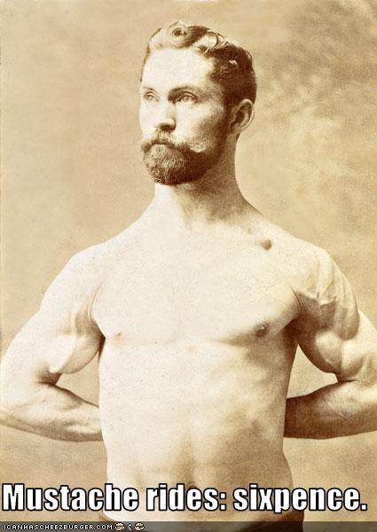 funny gentleman mustache rauncy strength - 3669952512