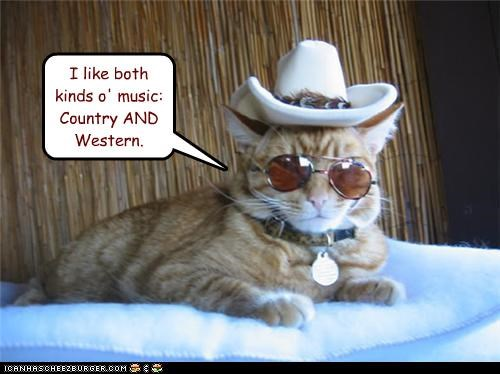 both,caption,captioned,cat,country,cowboy hat,hat,kinds,Music,quote,sunglasses,western