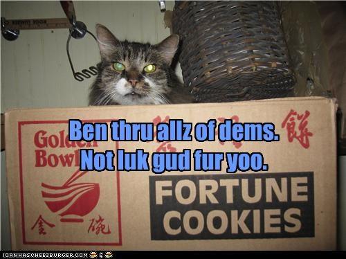 cookies fortune - 3670365696