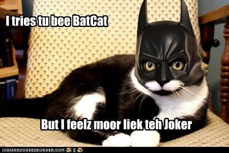 I tries tu bee BatCat But I feelz moor liek teh Joker