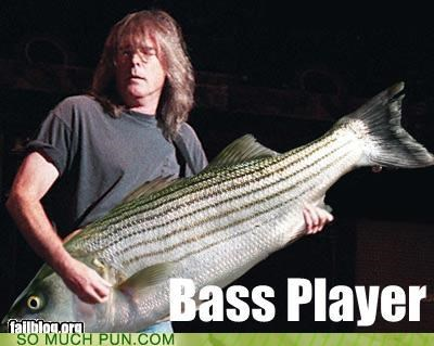 bass player fish funk Music puns - 3673351424