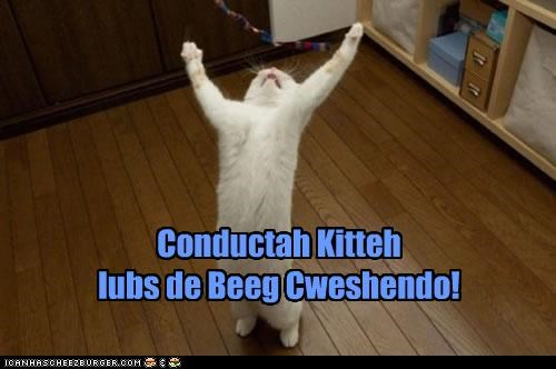 big caption captioned cat conducting conductor crescendo Hall of Fame loves Music - 3673910784