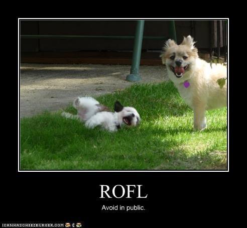 ROFL Avoid in public.