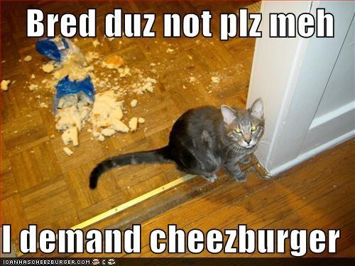 Cheezburger Image 3674941696