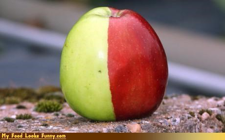 apple fruit fruits-veggies green multicolored red wtf apple - 3675984640