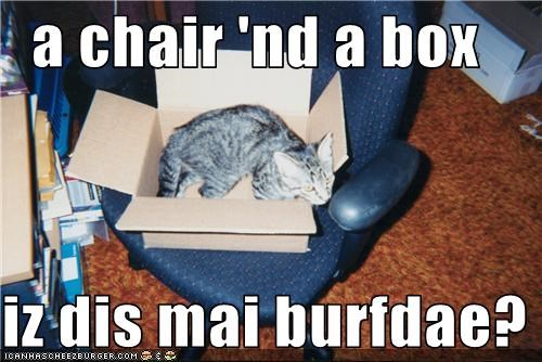 a chair 'nd a box  iz dis mai burfdae?