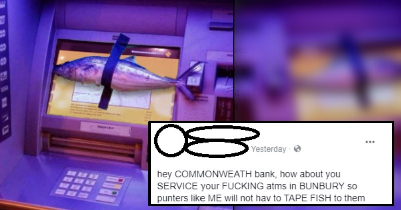Internet Celebrates Frustrated Dude For Taping Fish to the Screen of ATM